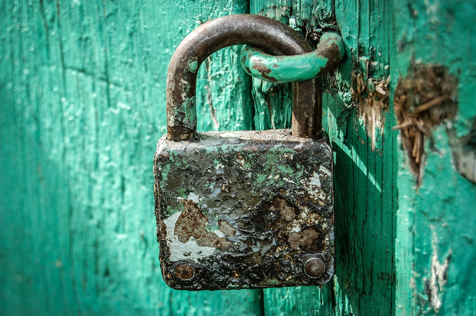 5 things to examine in your cybersecurity review